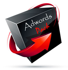 pack referencement adwords
